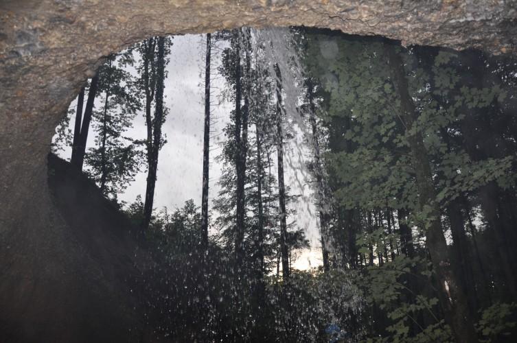 Waldwochenende 2010 009