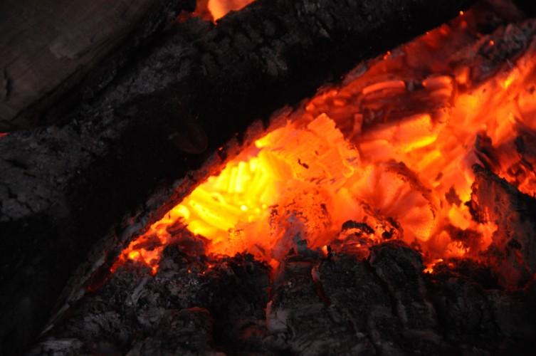 Waldwochenende 2010 028